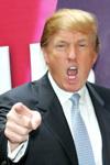 Trumpfired